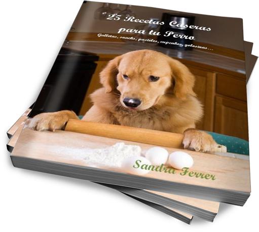 Recetas caseras para perros