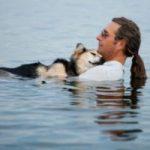 perro con artrosis