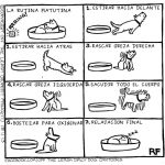 rutina matutina canina