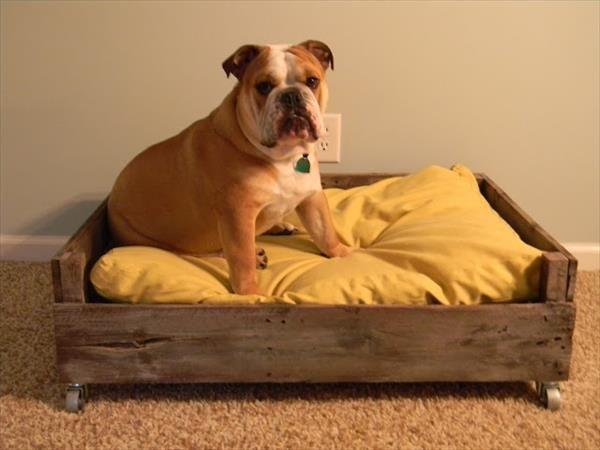 Camas para perros recicladas por ti - Canisette pour chien ...