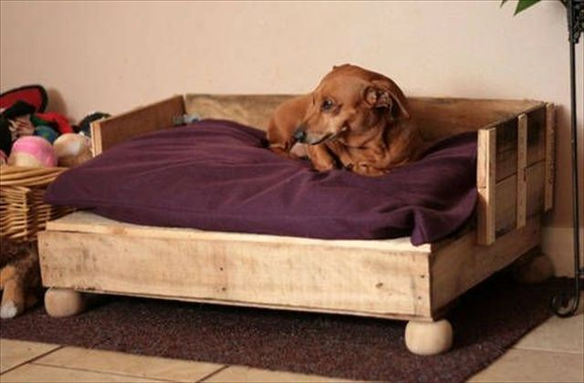 Camas para perros recicladas por ti for Making a dog bed out of a table