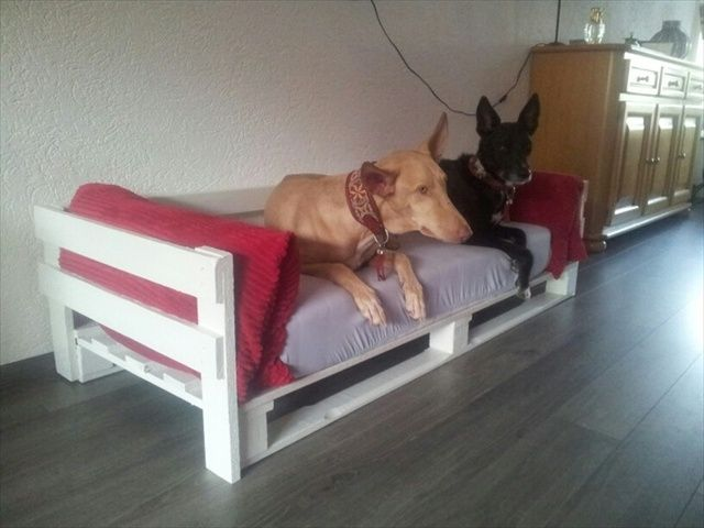 Making A Dog Bed With Sides