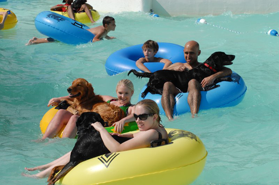 parques acuáticos para perros