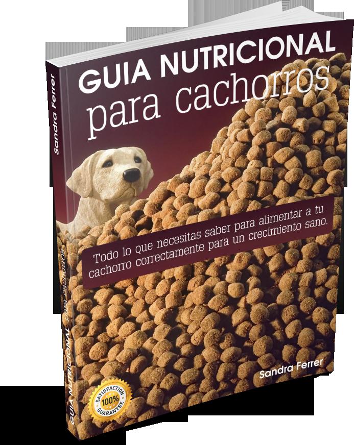 guía nutricional para el cachorro