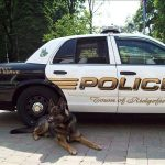 Zeus el perro policía