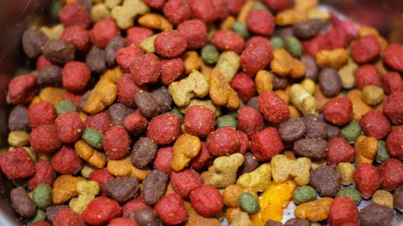 cuidado con esta marca de comida para perros