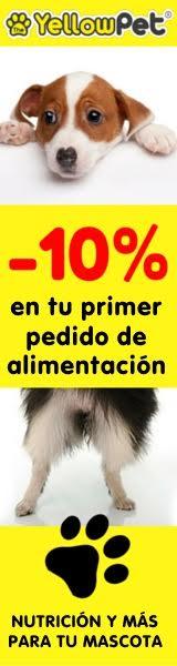 La tienda de tu perro