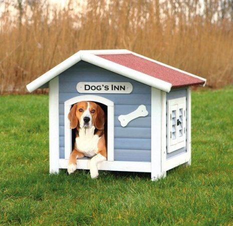 Tipos de casetas para perros el encantador de perros for Casetas para perros bricomart