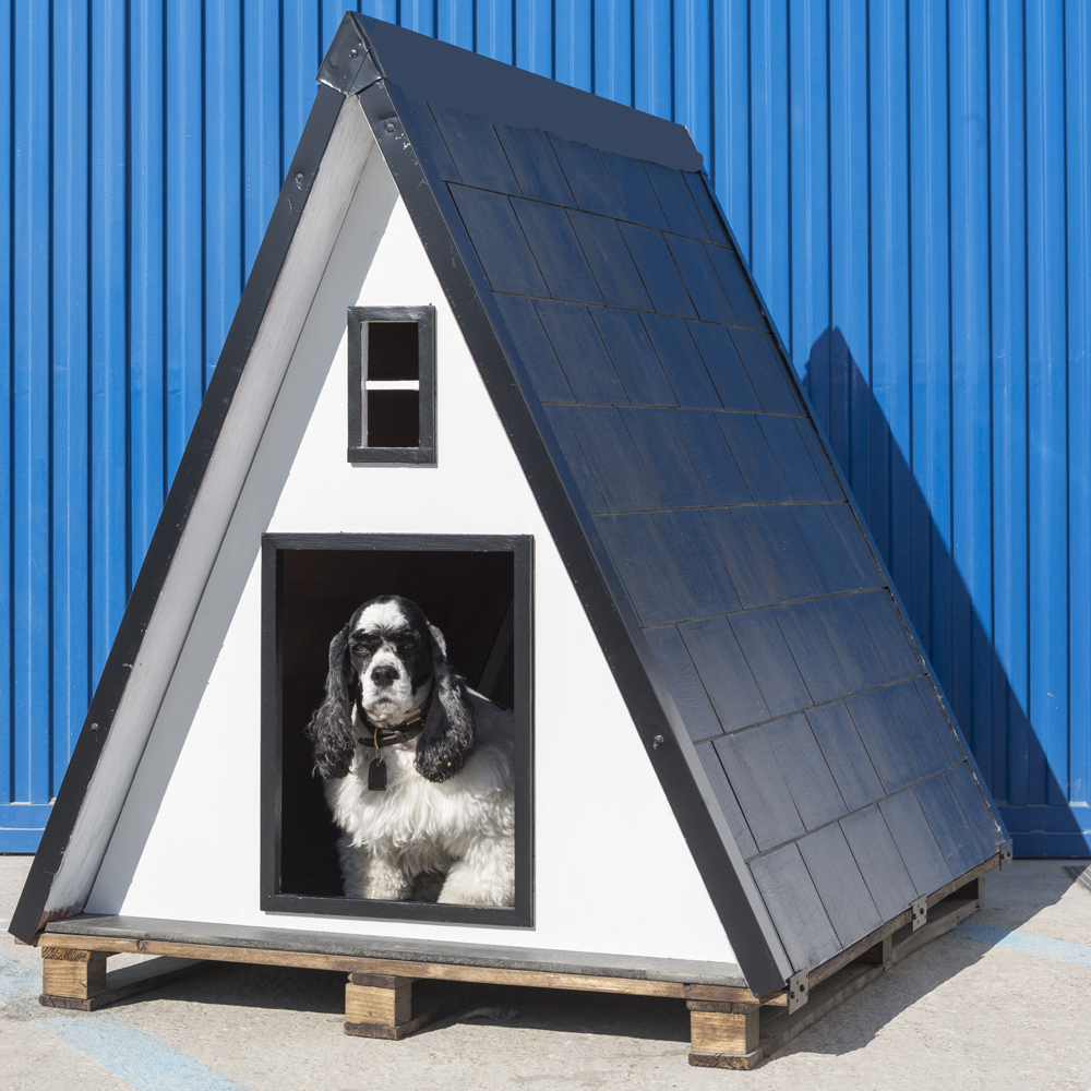 casetas para perros de calidad