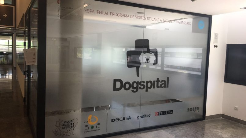 hospital dogfriendly de España