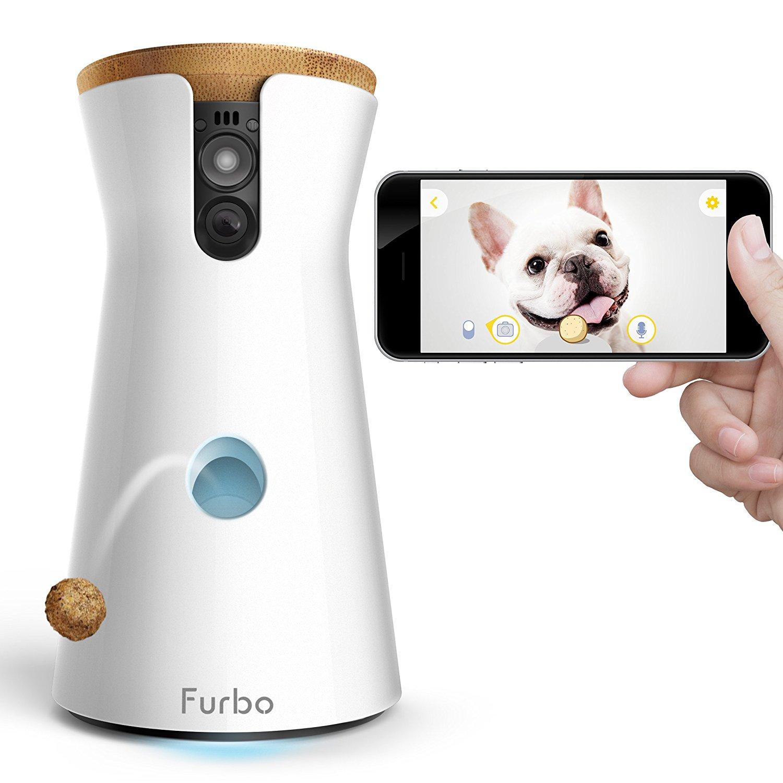 cámara para perros